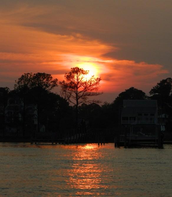 Chincoteague Sunset thru the Trees